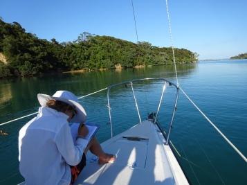 bay of islands, nz