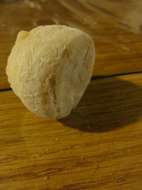 vieux fromage de chevre 019